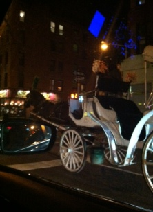 Horse and Buggy in traffic on ride home.